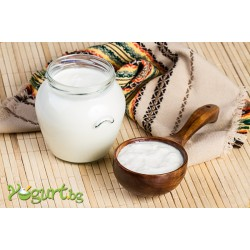 Homeland of yogurt is Bulgaria