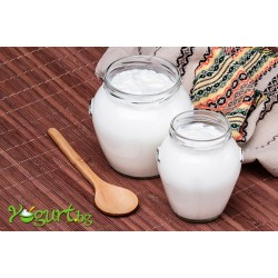 Biological and Healthy Features of Bulgarian Yogurt